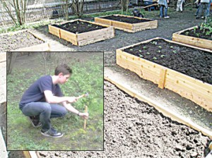 McArthur helped design six garden beds in a formerly empty lot.