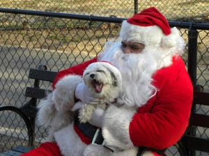 """Debra Snyder, Founding President of Inwoof, in 2010, her last year as """"Santa Paws"""". Photo: John Barclay"""