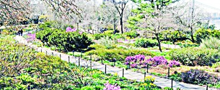 header_heather_garden_C(web)
